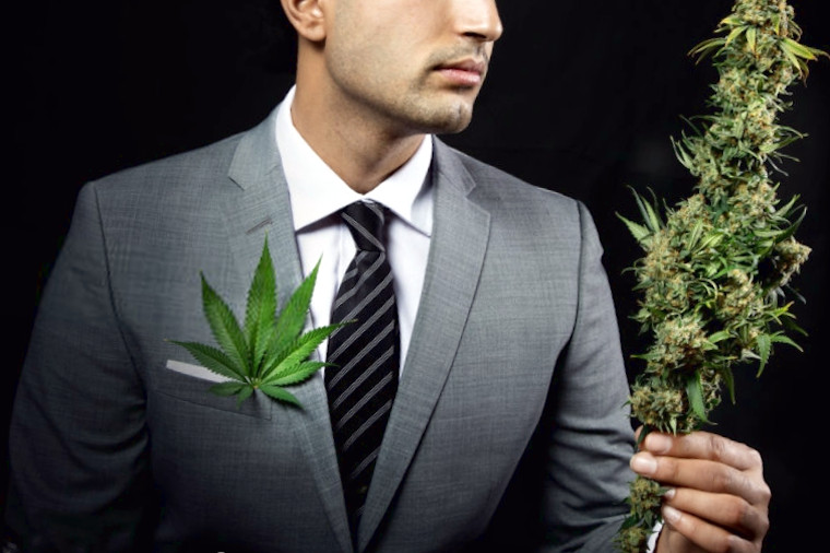 marijuana business platforms fundraising